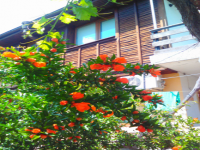 Guest house Denica